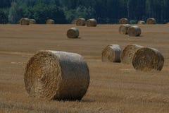 Связки сена в поле в чехе Стоковое Изображение