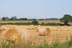 Связки сена в поле Норфолке стоковое изображение rf