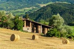 Связки сена в поле стоковая фотография