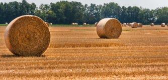 Связки сена в полях Стоковые Изображения RF