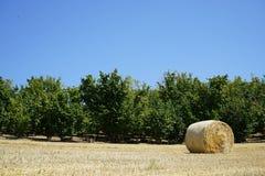 Связки сена в сельской местности Стоковое фото RF
