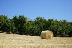 Связки сена в сельской местности Стоковые Изображения
