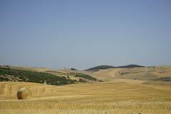 Связки сена в сельской местности Стоковые Фотографии RF