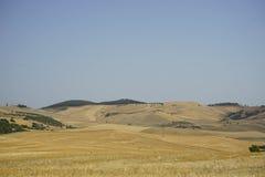Связки сена в сельской местности Стоковое Изображение