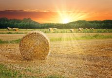Связки сена в сценарном заходе солнца стоковые фотографии rf