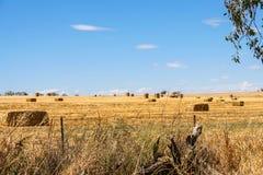 Связки сена загрузки трактора Стоковое Изображение