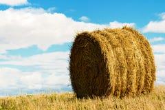 Связки сена или соломы в поле Стоковые Фото