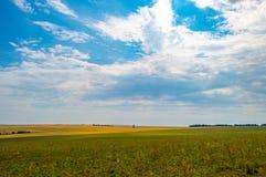 Связки сена и соломы в конце лета Стоковая Фотография