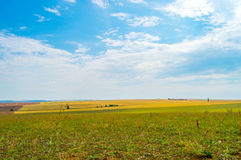 Связки сена и соломы в конце лета Стоковое Изображение