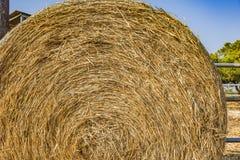 Связки сена на поле после сбора стоковые фотографии rf