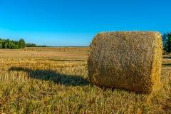 Связки сена - сельский ландшафт, конец солнечного дня Стоковое Изображение RF