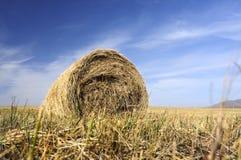 Связки сена Стоковое Фото