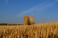 Связки сена Стоковое Изображение RF