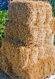 Связки сена Стоковое фото RF