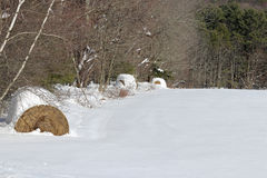 Связки сена Snowy Стоковые Изображения RF