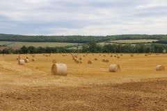 Связки соломы в поле стоковые изображения
