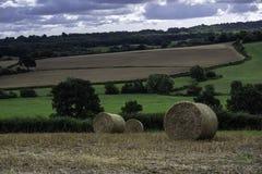 Связки соломы в полях на летний день стоковые фото