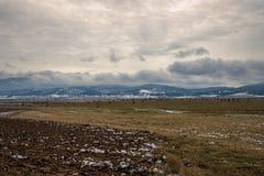 Связки соломы на поле зимы Стоковые Изображения RF