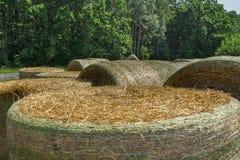 Связки соломы пшеницы механически упаковали в зеленой пластичной сетке после сбора Сельский ландшафт на день лета солнечный Стоковая Фотография RF