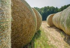 Связки соломы пшеницы механически упаковали в зеленой пластичной сетке после сбора Сельский ландшафт на день лета солнечный Стоковые Фотографии RF