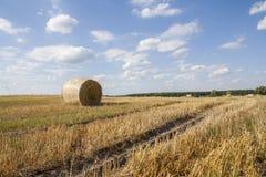 Связки соломы в обрабатываемой земле полей с голубым облачным небом Стоковое фото RF