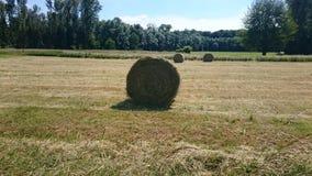 Связки соломы на поле Стоковая Фотография