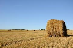 Связки соломы на поле Стоковая Фотография RF