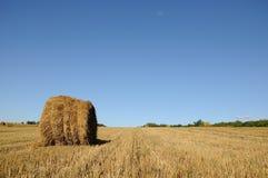Связки соломы на поле Стоковое Фото