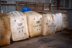 Связки шерстей в хранении западной Австралии Стоковое фото RF