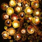святейшие света стоковые изображения rf