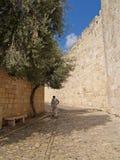 святейшие люди Израиля Иерусалима еврейские большая часть один люд устанавливают места священнейшие к голося стене Узкая малая ул Стоковое Изображение
