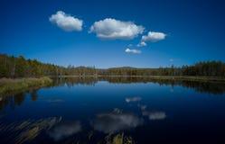Святейший мир Стоковая Фотография RF