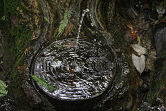 Святилище 1 Вильяма Ricketts - держатель Dandenong, Виктория, Австралия Стоковые Фото