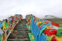 Святое озеро на Тибете Стоковые Фото