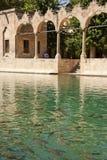 Святое озеро с священными рыбами Стоковая Фотография RF