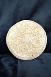 Святой Nectaire, сыр Auvergne Франции Стоковая Фотография RF