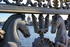 святой petersburg ландшафта Стоковые Фото