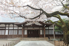 Святыня Ясакани была найдена для закреплять Стоковые Фотографии RF