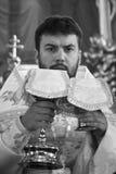 священник Стоковые Изображения