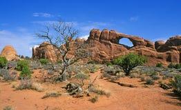 сгабривает вал национального парка можжевельника Стоковое Фото