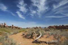 сгабривает национальный парк Стоковое Изображение RF