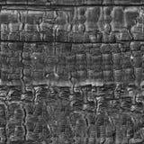 сгоранная древесина картины безшовная Стоковые Фотографии RF