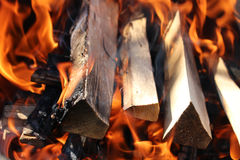 сгоранная древесина Стоковые Изображения RF