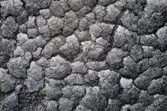 сгоранное деревянное Стоковые Фото