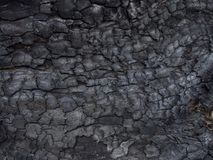 Сгорели деревянная предпосылка текстуры Стоковые Фото