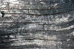 Сгорели деревянная текстура bacground Стоковые Изображения RF