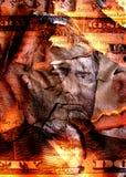 сгорели доллар Стоковое Фото