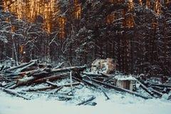 сгорели дом деревянная стоковое изображение rf