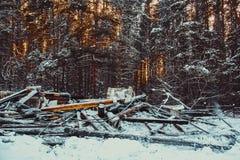 сгорели дом деревянная стоковые фото