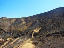 Сгорели каньон Стоковая Фотография